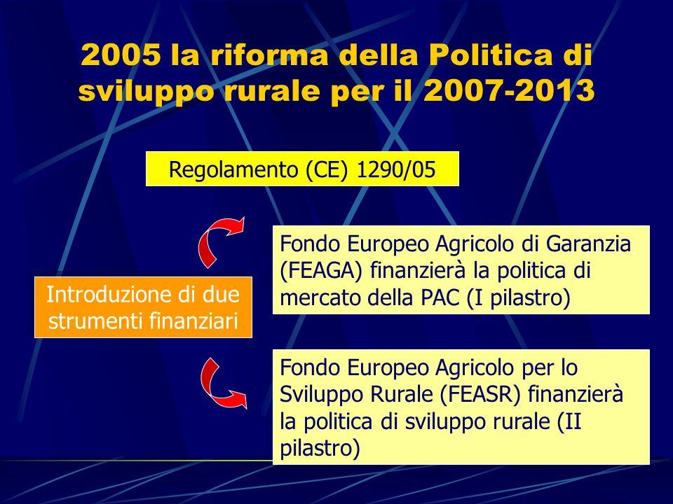 2005 la riforma della Politica di sviluppo rurale per il 2007-2013 Regolamento (CE) 1290/05 Introduzione di due strumenti finanziari Fondo Europeo Agricolo di Garanzia (FEAGA) finanzierà la politica di mercato della PAC (I pilastro) Fondo Europeo Agricolo per lo Sviluppo Rurale (FEASR) finanzierà la politica di sviluppo rurale (II pilastro)