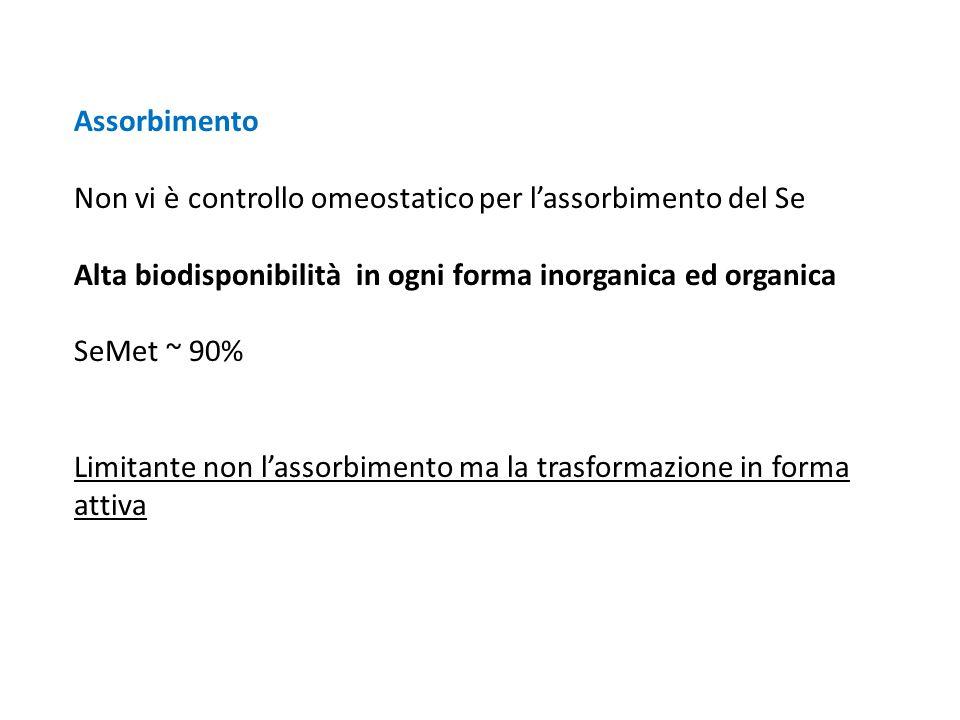 Assorbimento Non vi è controllo omeostatico per l'assorbimento del Se Alta biodisponibilità in ogni forma inorganica ed organica SeMet ~ 90% Limitante
