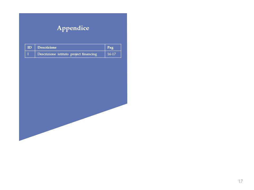 17 IDDescrizionePag IDescrizione istituto project financing16-17 Appendice