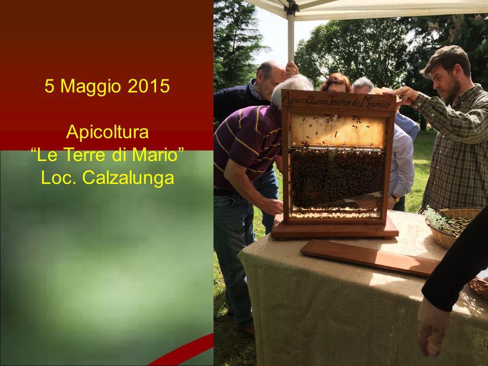 """5 Maggio 2015 Apicoltura """"Le Terre di Mario"""" Loc. Calzalunga"""