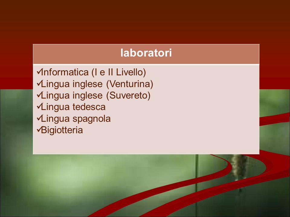 laboratori Informatica (I e II Livello) Lingua inglese (Venturina) Lingua inglese (Suvereto) Lingua tedesca Lingua spagnola Bigiotteria