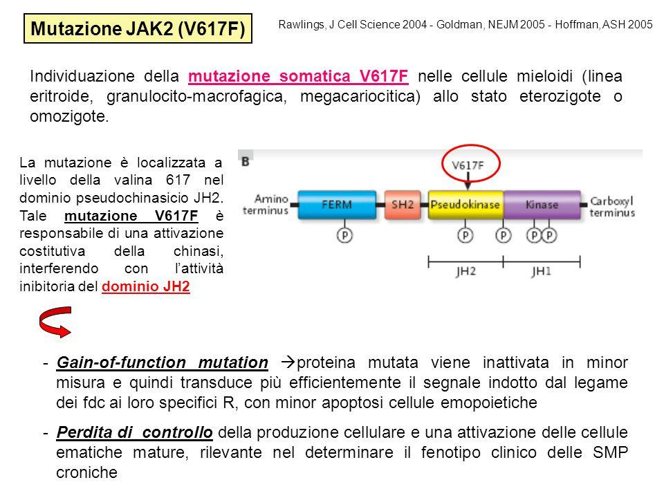 La mutazione è localizzata a livello della valina 617 nel dominio pseudochinasicio JH2. Tale mutazione V617F è responsabile di una attivazione costitu