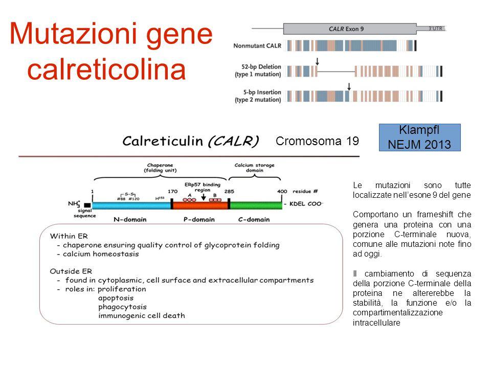 Mutazioni gene calreticolina Cromosoma 19 Le mutazioni sono tutte localizzate nell'esone 9 del gene Comportano un frameshift che genera una proteina c