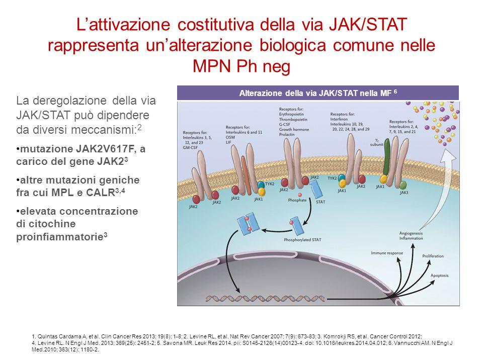 1. Quintas Cardama A, et al. Clin Cancer Res 2013; 19(8); 1-8; 2. Levine RL, et al. Nat Rev Cancer 2007; 7(9): 673-83; 3. Komrokji RS, et al. Cancer C