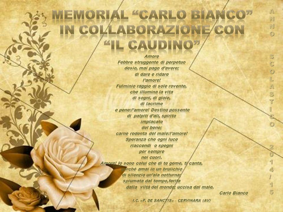  Classe IIIE coord.Prof.ssa A. Ragucci  Classe IB coord.