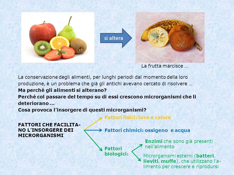 si altera La frutta marcisce … La conservazione degli alimenti, per lunghi periodi dal momento della loro produzione, è un problema che già gli antich