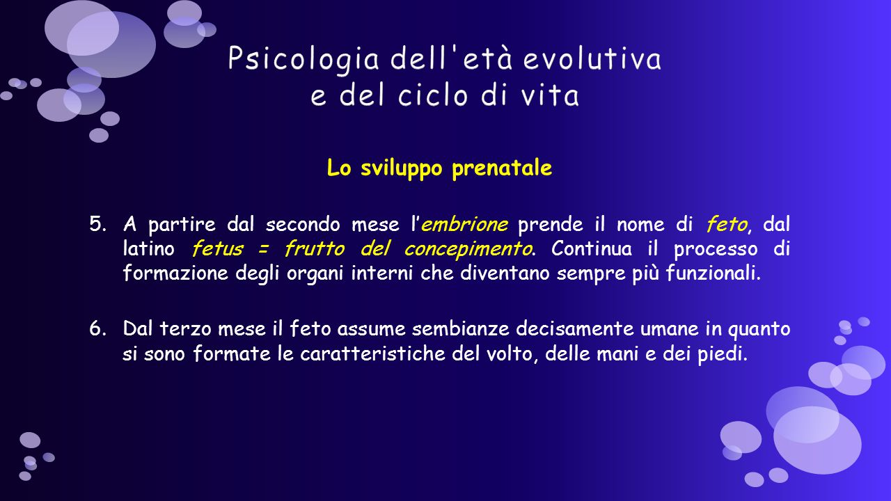 Lo sviluppo prenatale 5.A partire dal secondo mese l'embrione prende il nome di feto, dal latino fetus = frutto del concepimento.