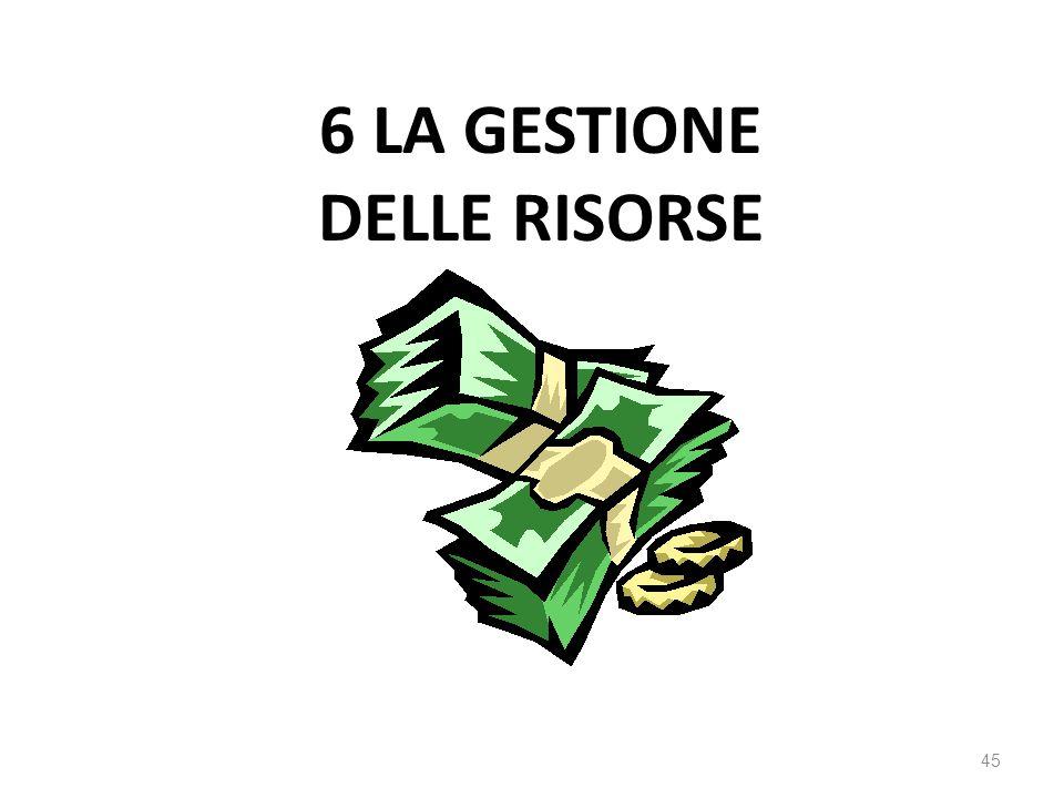 6 LA GESTIONE DELLE RISORSE 45