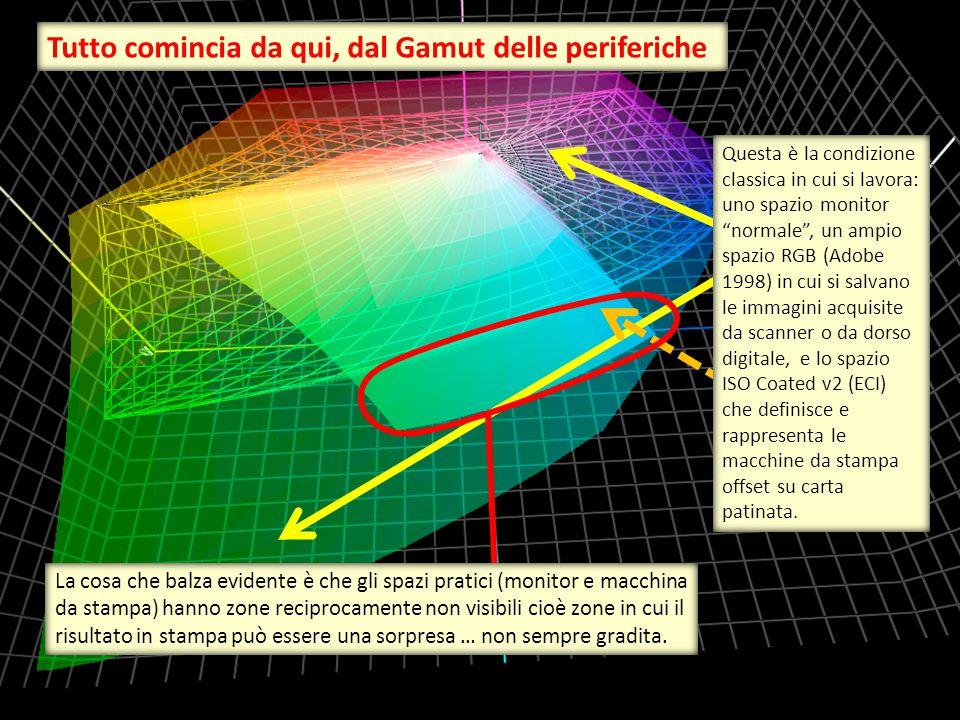 """Questa è la condizione classica in cui si lavora: uno spazio monitor """"normale"""", un ampio spazio RGB (Adobe 1998) in cui si salvano le immagini acquisi"""
