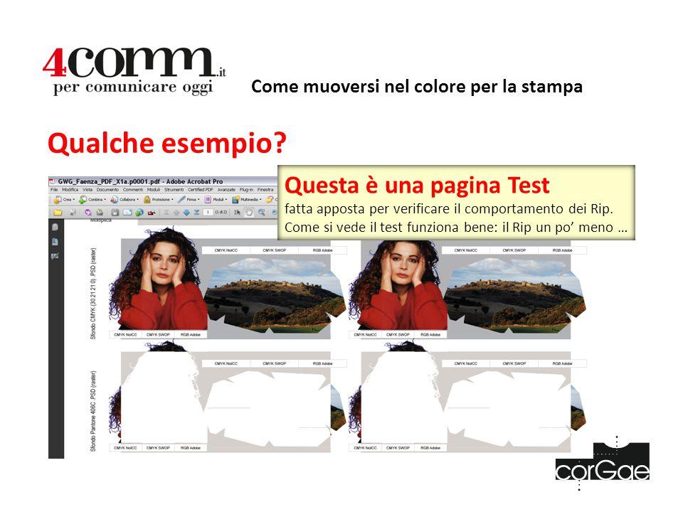 Come muoversi nel colore per la stampa Qualche esempio? Questa è una pagina Test fatta apposta per verificare il comportamento dei Rip. Come si vede i