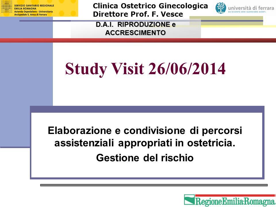 Study Visit 26/06/2014 Elaborazione e condivisione di percorsi assistenziali appropriati in ostetricia. Gestione del rischio Clinica Ostetrico Ginecol