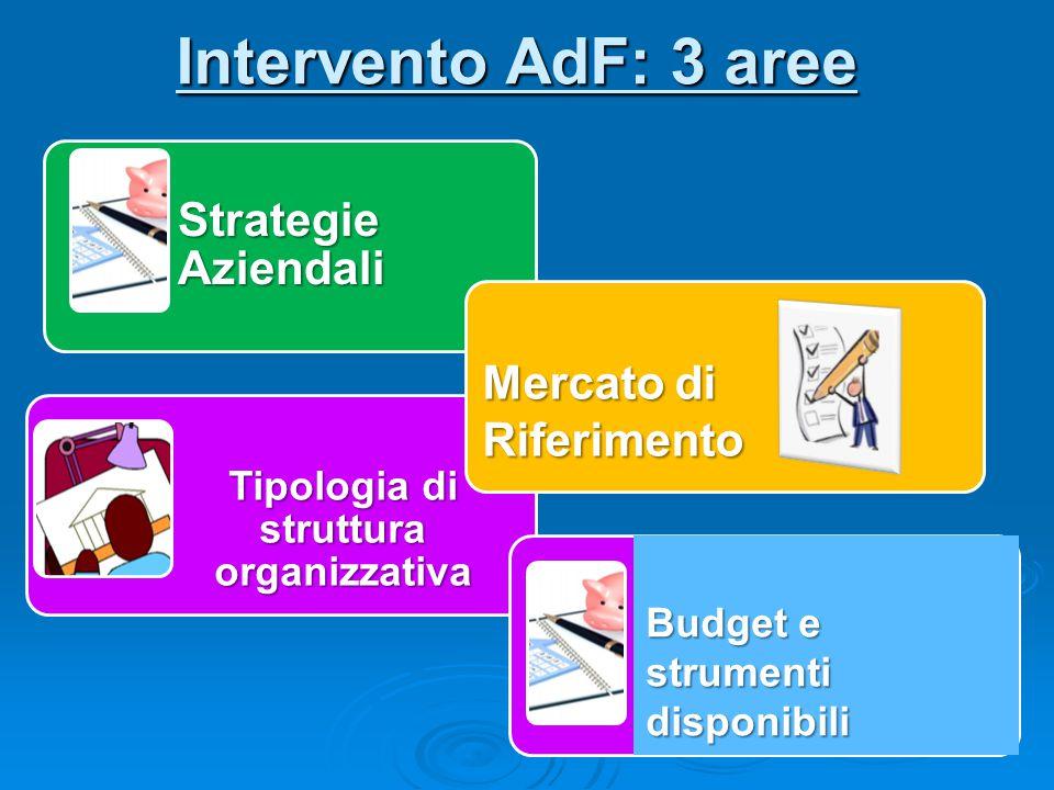 Intervento AdF: 3 aree Strategie Aziendali Tipologia di struttura organizzativa Mercato di Riferimento Budget e strumenti disponibili