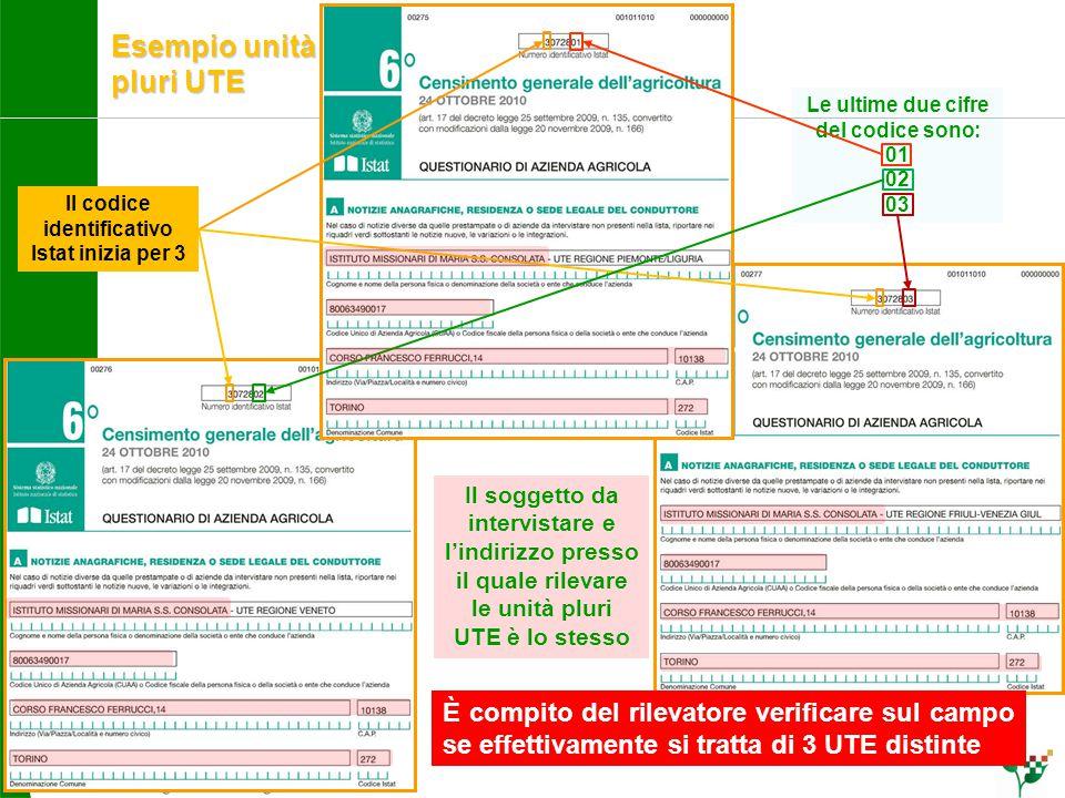 Esempio unità pluri UTE Il codice identificativo Istat inizia per 3 Le ultime due cifre del codice sono: 01 02 03 Il soggetto da intervistare e l'indi