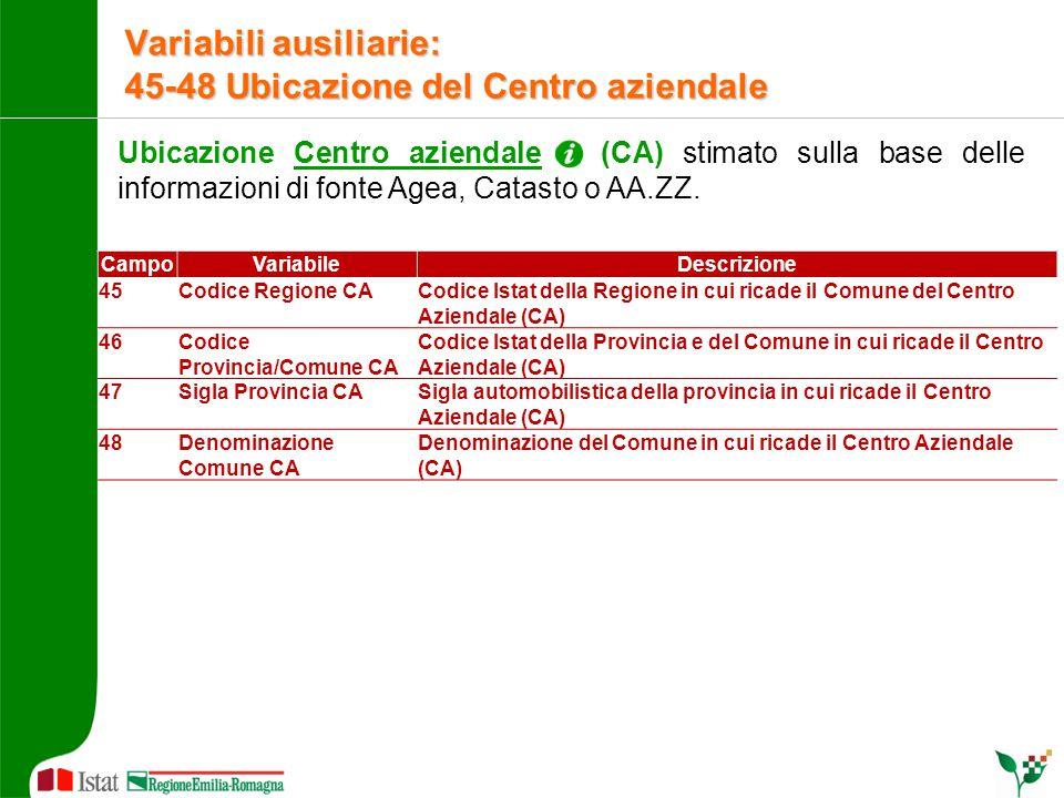 Ubicazione Centro aziendale (CA) stimato sulla base delle informazioni di fonte Agea, Catasto o AA.ZZ. Variabili ausiliarie: 45-48 Ubicazione del Cent