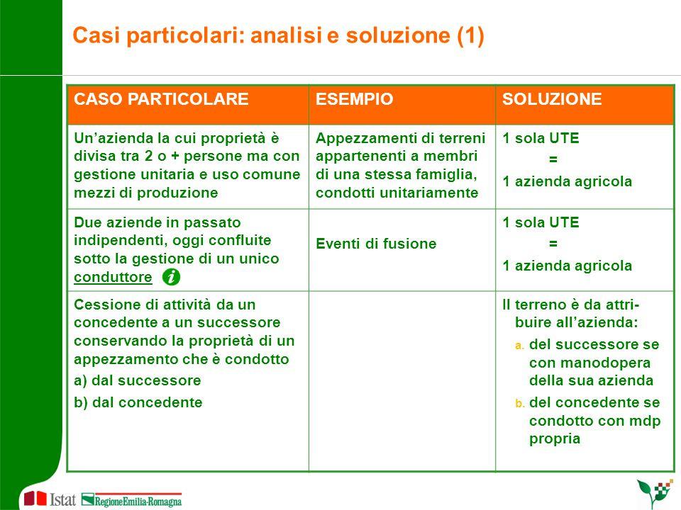 Casi particolari: analisi e soluzione (1) CASO PARTICOLAREESEMPIOSOLUZIONE Un'azienda la cui proprietà è divisa tra 2 o + persone ma con gestione unit