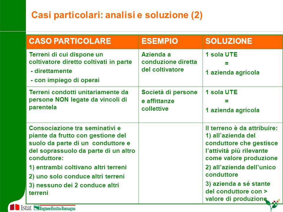 Casi particolari: analisi e soluzione (2) CASO PARTICOLAREESEMPIOSOLUZIONE Terreni di cui dispone un coltivatore diretto coltivati in parte - direttam