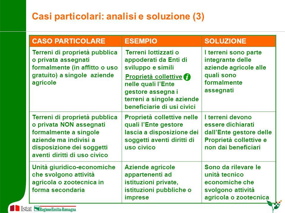 Casi particolari: analisi e soluzione (3) CASO PARTICOLAREESEMPIOSOLUZIONE Terreni di proprietà pubblica o privata assegnati formalmente (in affitto o