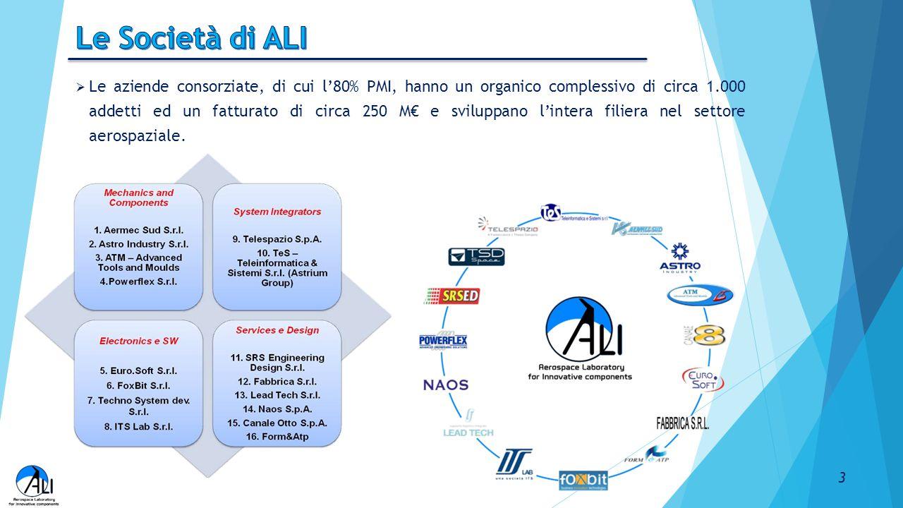  Le aziende consorziate, di cui l'80% PMI, hanno un organico complessivo di circa 1.000 addetti ed un fatturato di circa 250 M€ e sviluppano l'intera