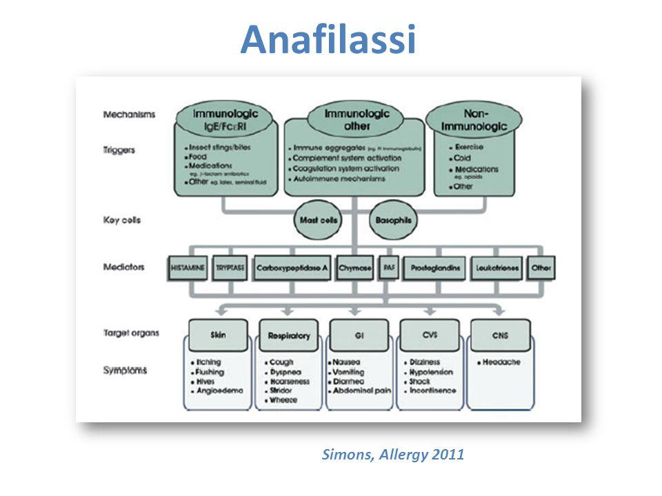 Anafilassi Simons, Allergy 2011