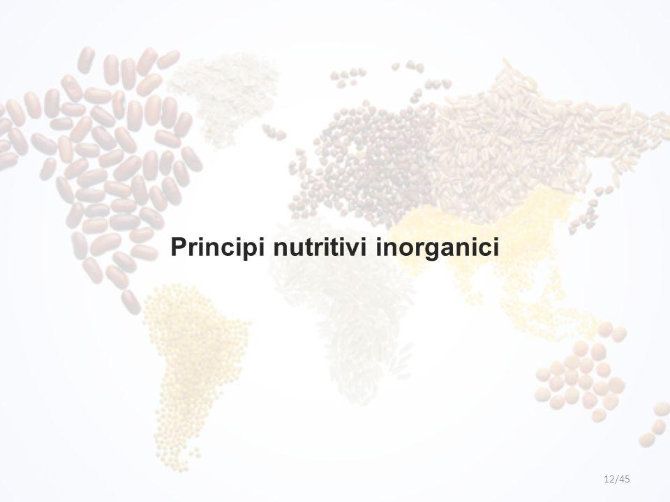 Principi nutritivi inorganici 12/45