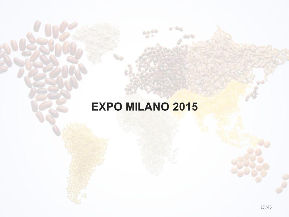 EXPO MILANO 2015 29/45