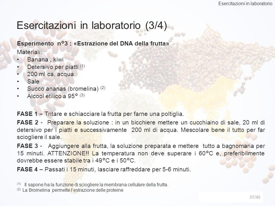 Esercitazioni in laboratorio (3/4) 37 Esperimento n°3 : «Estrazione del DNA della frutta» Materiali: Banana, kiwi Detersivo per piatti (1) 200 ml ca.