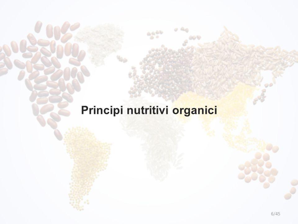Principi nutritivi organici 6/45