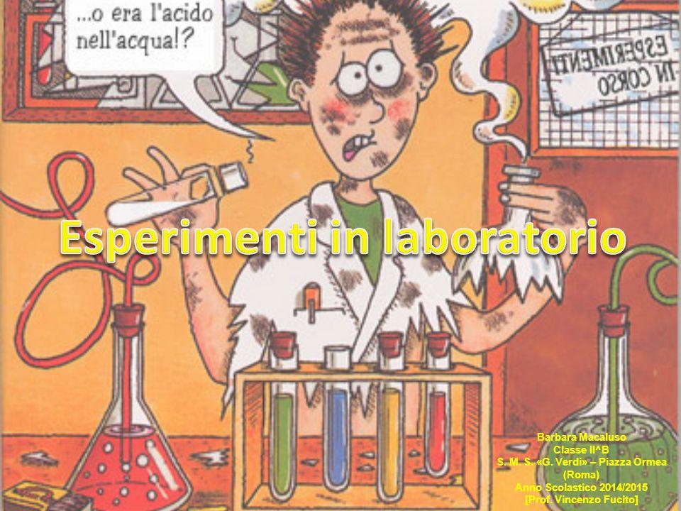 Esercitazioni in laboratorio 2 Lunedì 20 aprile 2015, nel pomeriggio, insieme ad altri compagni di classe e di istituto, sono andata nel plesso «Via di Casalotti», dove, insieme al Prof.