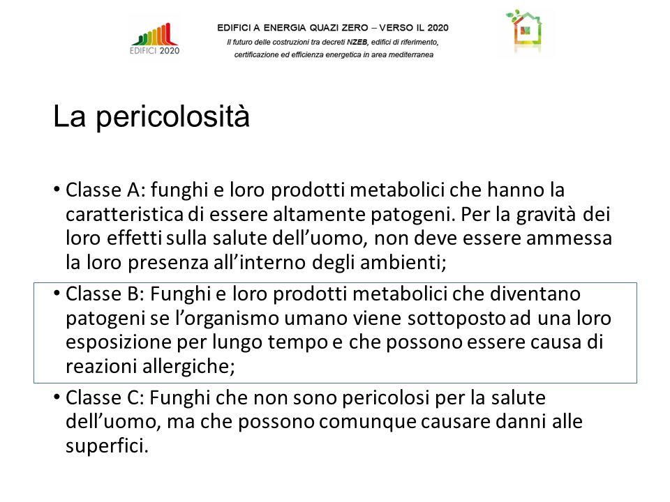 La pericolosità Classe A: funghi e loro prodotti metabolici che hanno la caratteristica di essere altamente patogeni.