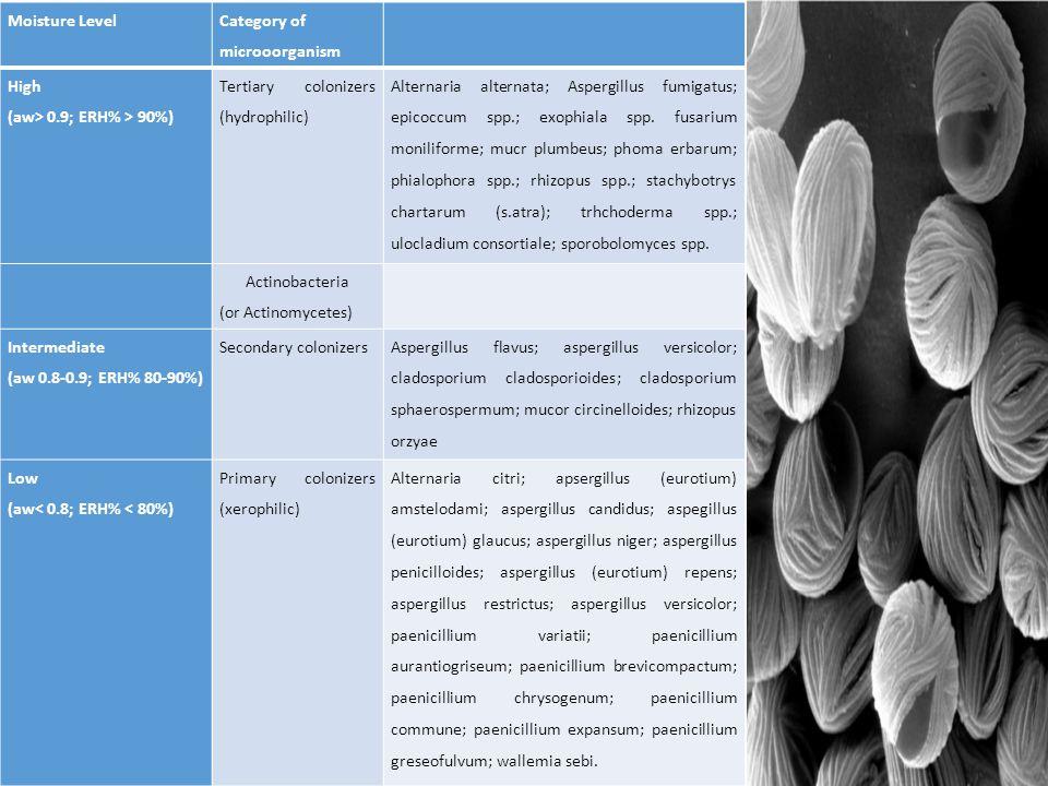 Moisture Level Category of microoorganism High (aw> 0.9; ERH% > 90%) Tertiary colonizers (hydrophilic) Alternaria alternata; Aspergillus fumigatus; epicoccum spp.; exophiala spp.