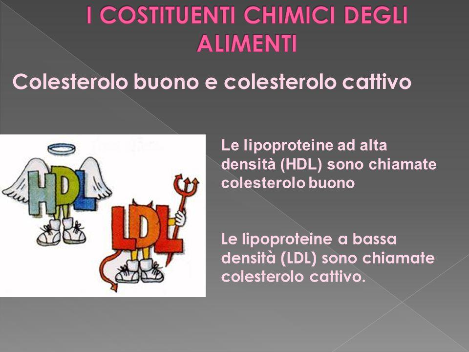 Colesterolo buono e colesterolo cattivo Le lipoproteine ad alta densità (HDL) sono chiamate colesterolo buono Le lipoproteine a bassa densità (LDL) sono chiamate colesterolo cattivo.