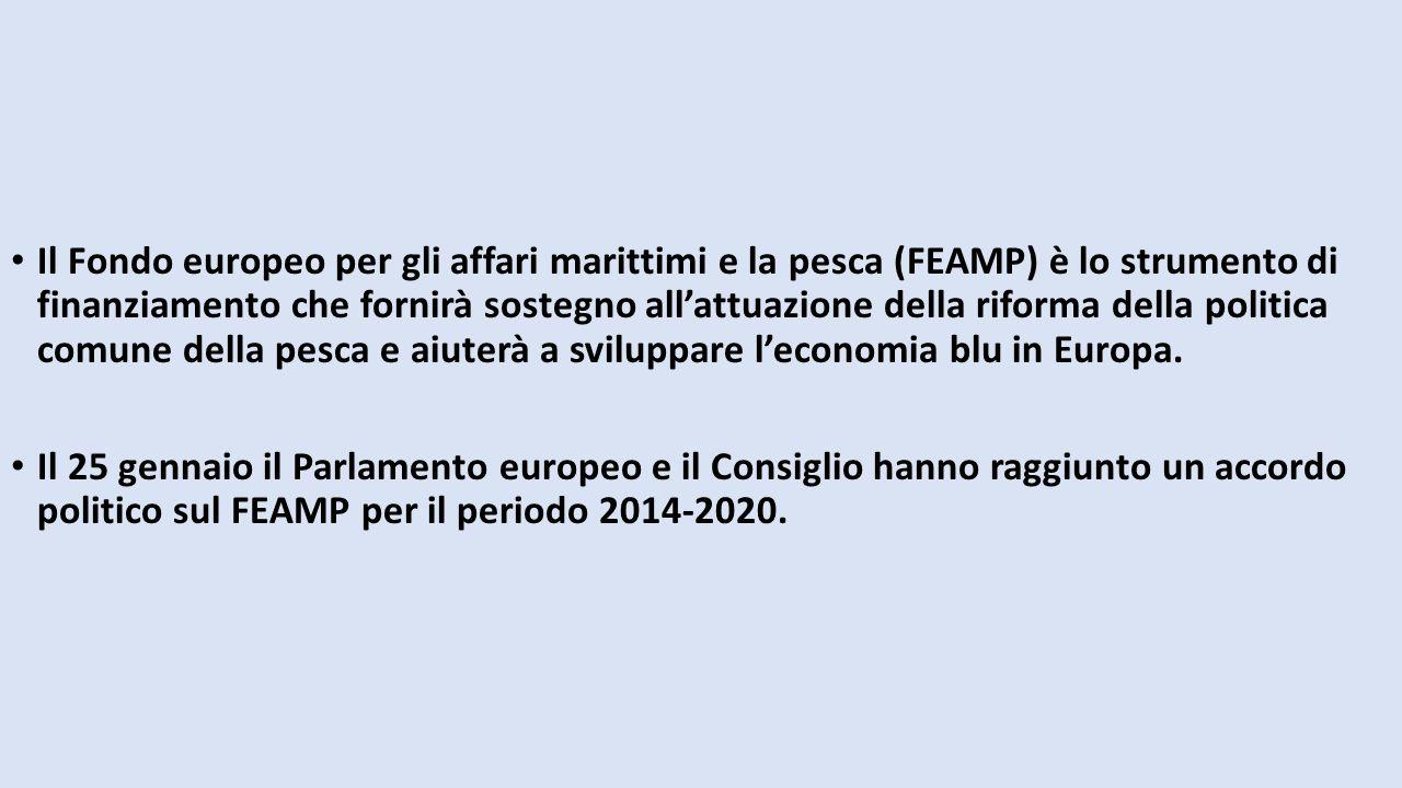 Il Fondo europeo per gli affari marittimi e la pesca (FEAMP) è lo strumento di finanziamento che fornirà sostegno all'attuazione della riforma della p