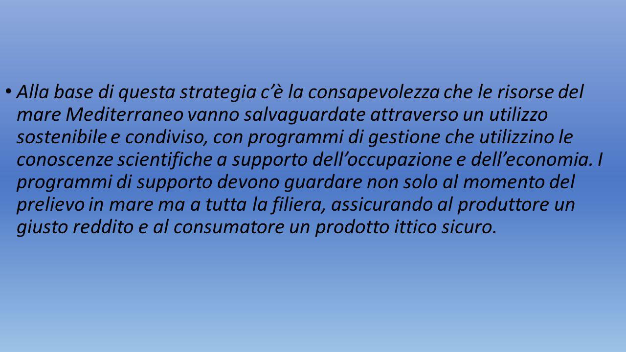 Alla base di questa strategia c'è la consapevolezza che le risorse del mare Mediterraneo vanno salvaguardate attraverso un utilizzo sostenibile e cond
