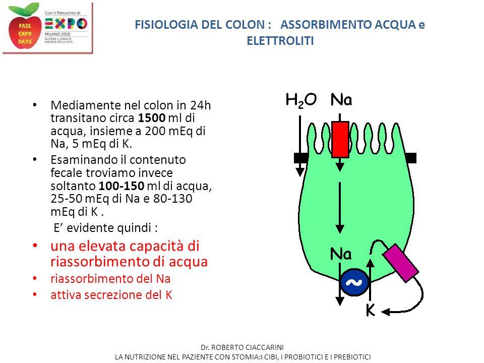 Mediamente nel colon in 24h transitano circa 1500 ml di acqua, insieme a 200 mEq di Na, 5 mEq di K. Esaminando il contenuto fecale troviamo invece sol