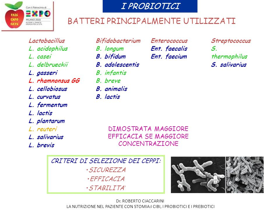 BATTERI PRINCIPALMENTE UTILIZZATI LactobacillusBifidobacteriumEnterococcusStreptococcus L. acidophilus L. casei L. delbrueckii L. gasseri L. rhamnonsu
