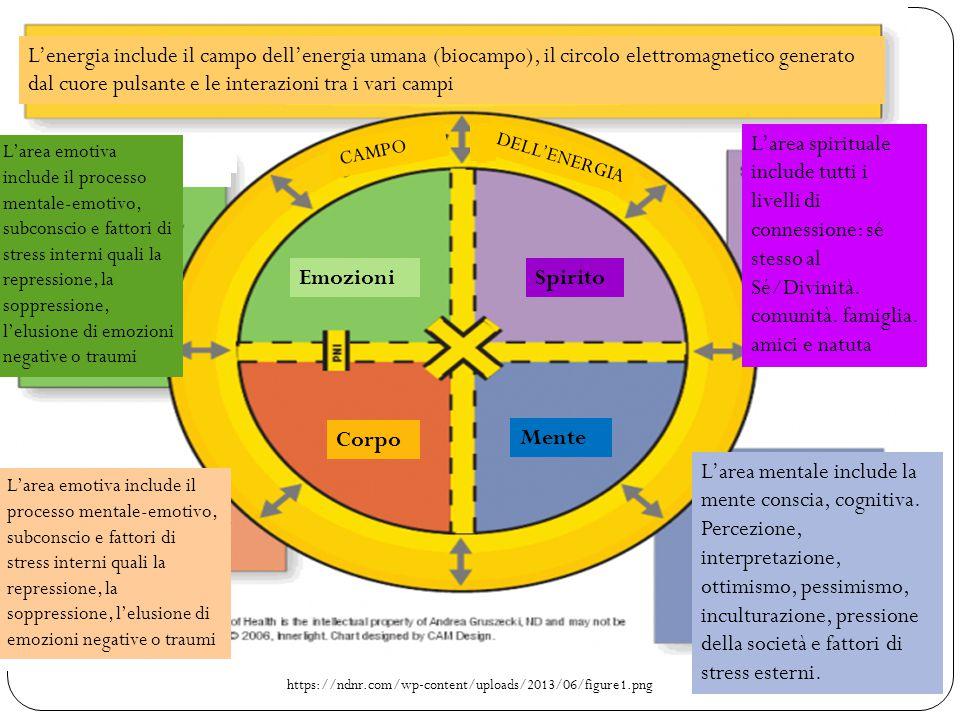 https://ndnr.com/wp-content/uploads/2013/06/figure1.png L'energia include il campo dell'energia umana (biocampo), il circolo elettromagnetico generato