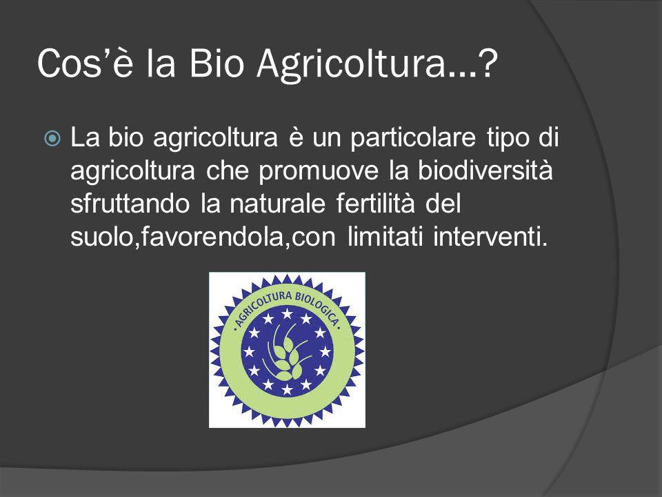 Cos'è la Bio Agricoltura…?  La bio agricoltura è un particolare tipo di agricoltura che promuove la biodiversità sfruttando la naturale fertilità del