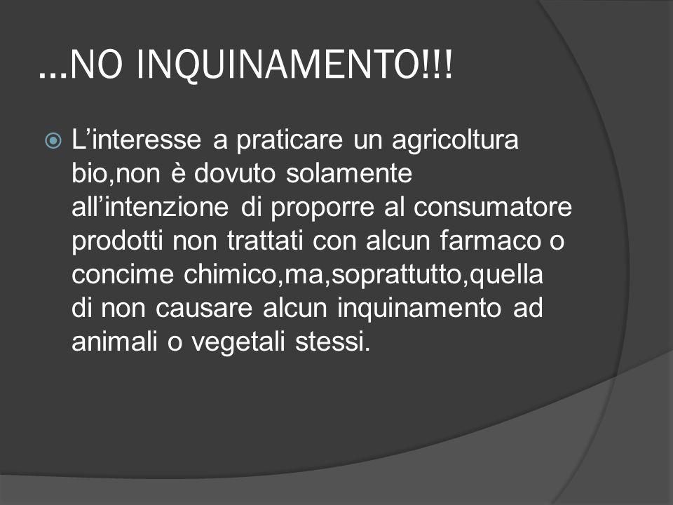 …NO INQUINAMENTO!!!  L'interesse a praticare un agricoltura bio,non è dovuto solamente all'intenzione di proporre al consumatore prodotti non trattat