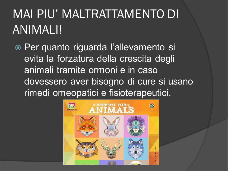 MAI PIU' MALTRATTAMENTO DI ANIMALI!  Per quanto riguarda l'allevamento si evita la forzatura della crescita degli animali tramite ormoni e in caso do