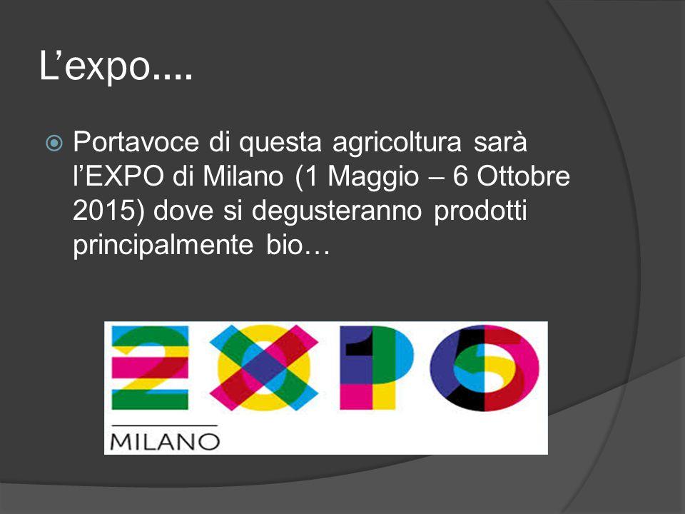 L'expo….  Portavoce di questa agricoltura sarà l'EXPO di Milano (1 Maggio – 6 Ottobre 2015) dove si degusteranno prodotti principalmente bio…