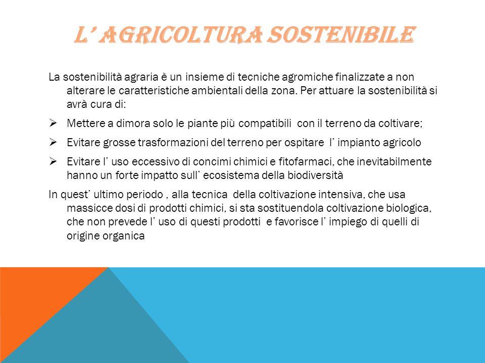 L' AGRICOLTURA SOSTENIBILE La sostenibilità agraria è un insieme di tecniche agromiche finalizzate a non alterare le caratteristiche ambientali della