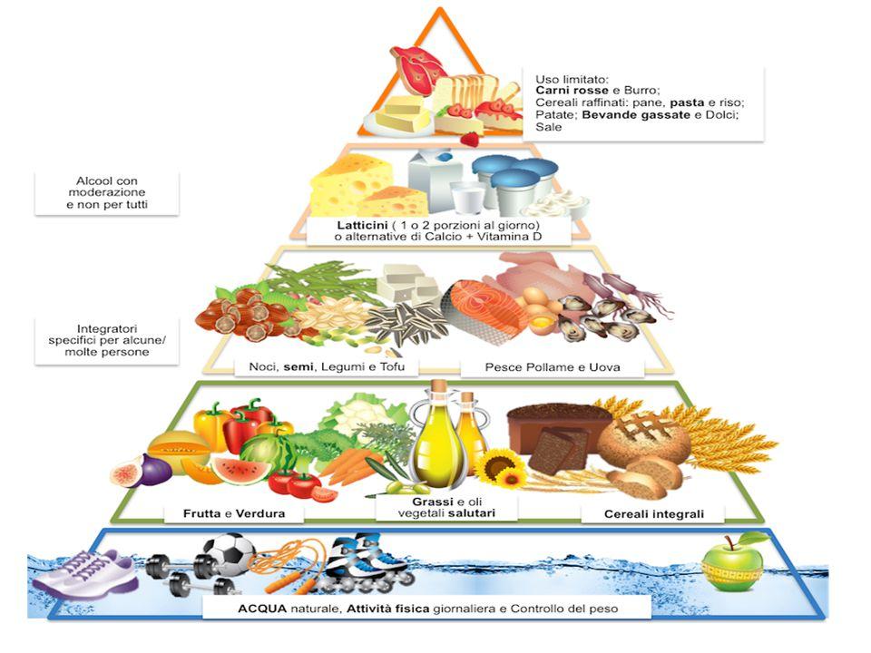 Cosa è? E' il simbolo della sana e corretta alimentazione e ci deve guidare nella scelta degli alimenti da consumare durante l'arco della giornata. Pe