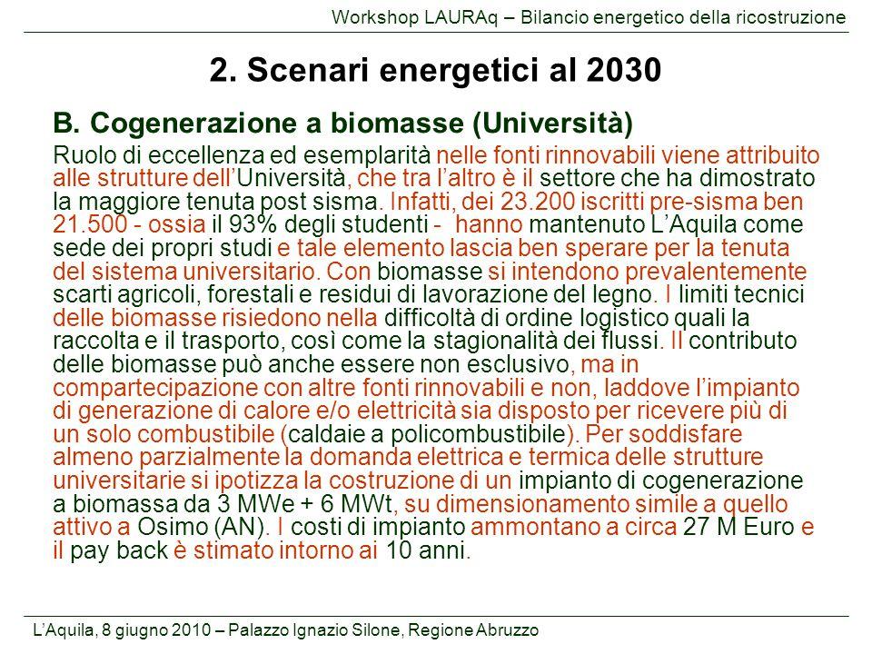 L'Aquila, 8 giugno 2010 – Palazzo Ignazio Silone, Regione Abruzzo Workshop LAURAq – Bilancio energetico della ricostruzione B. Cogenerazione a biomass