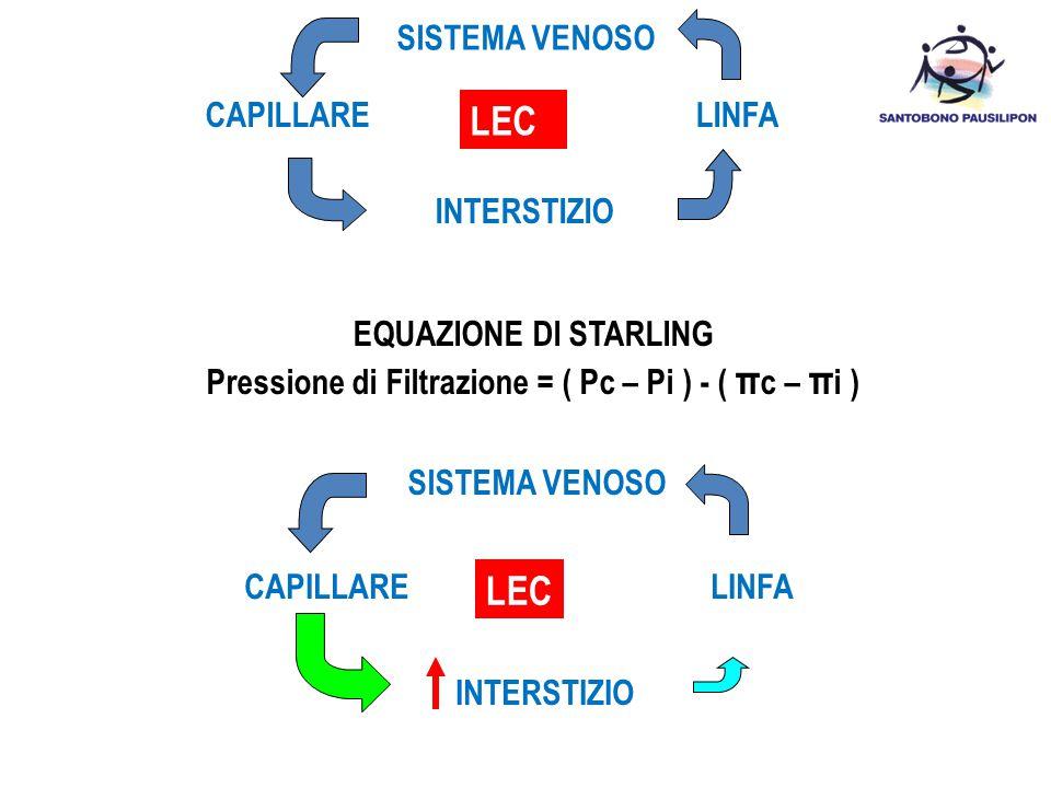 SISTEMA VENOSO INTERSTIZIO EQUAZIONE DI STARLING Pressione di Filtrazione = ( Pc – Pi ) - ( π c – π i ) SISTEMA VENOSO LEC INTERSTIZIO LEC CAPILLARELI