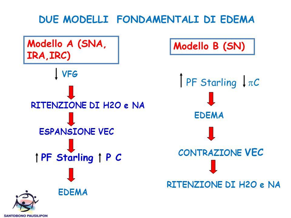 PF Starling P C DUE MODELLI FONDAMENTALI DI EDEMA Modello A (SNA, IRA,IRC) VFG RITENZIONE DI H2O e NA ESPANSIONE VEC EDEMA Modello B (SN) PF Starling