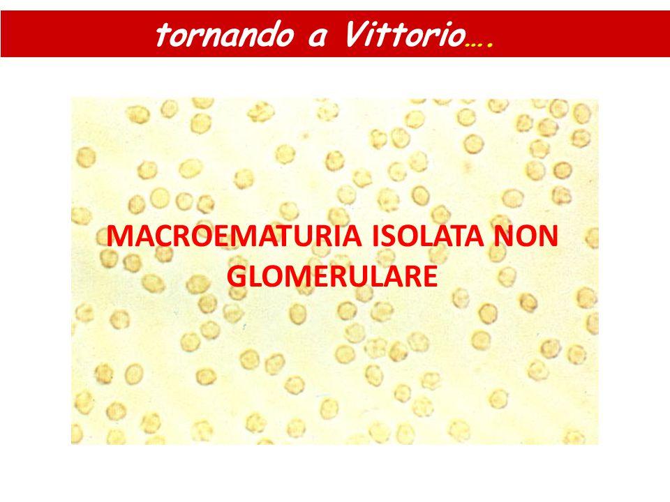 MACROEMATURIA ISOLATA NON GLOMERULARE tornando a Vittorio ….