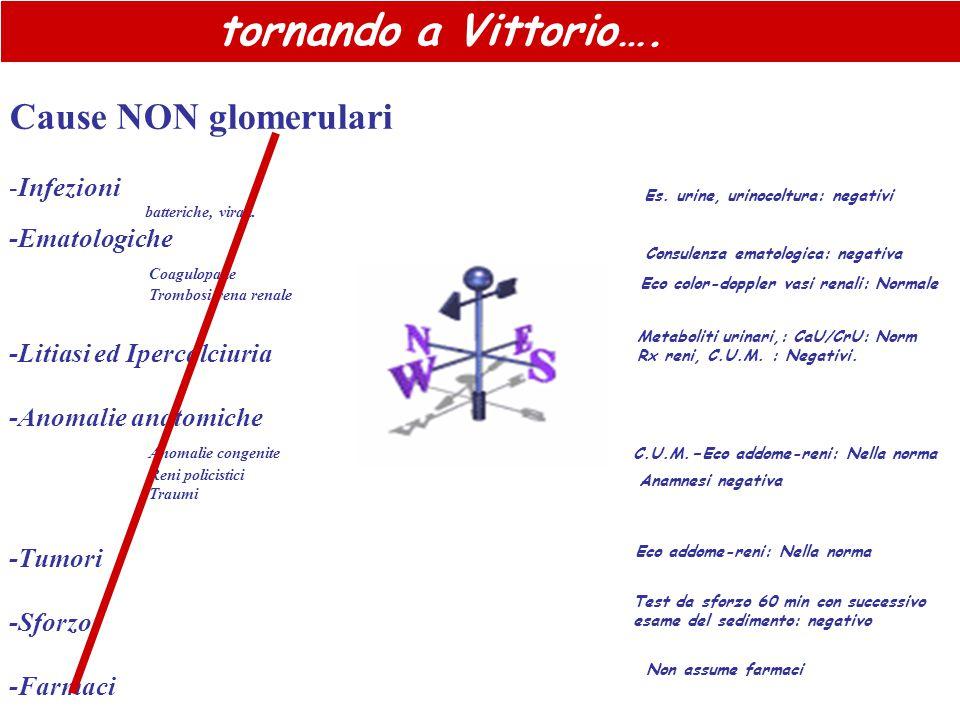 Cause NON glomerulari -Infezioni batteriche, virali. -Ematologiche Coagulopatie Trombosi vena renale -Litiasi ed Ipercalciuria -Anomalie anatomiche An