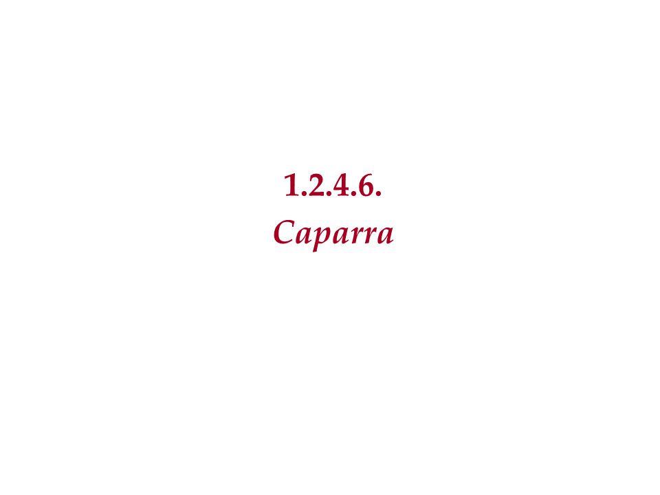 1.2.4.6. Caparra