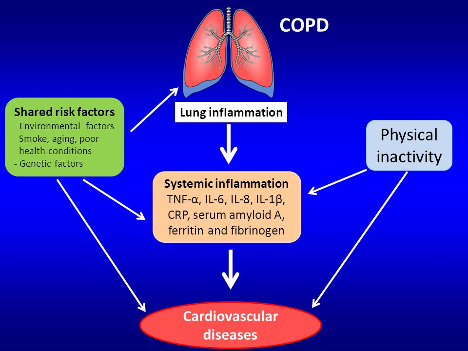 COPD Lung inflammation Systemic inflammation TNF-α, IL-6, IL-8, IL-1β, CRP, serum amyloid A, ferritin and fibrinogen Cardiovascular diseases Physical