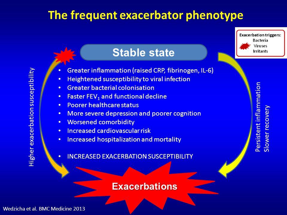 Cardiac Infarction Injury Score control mild 0 1 2 3 4 5 6 7 8 9 10 11 12 COPD severity Cardiac Infarction Injury Score moderate * severe * Miller et al ERJ 2006 CIIS: an electrocardiography coding scheme for ischemic heart disease
